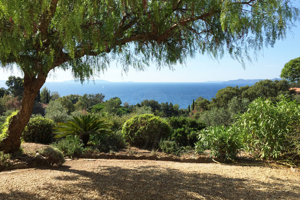 property for sale in rayol canadel with panoramic sea view , house with sea view , 6 bedrooms , swimming pool, var