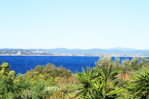 house for sale in Giens in few steps from the sea , house with sea view, 5 bedrooms and pool , var , cote d'azur