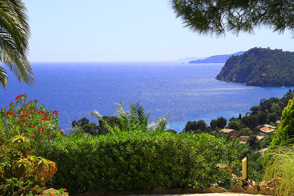 for sale, Rayol Canadel, close to St Tropez, panoramic sea view, swimming pool