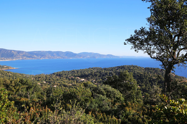 property in Lavandou with seaview with 4 hectares